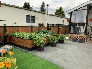 """Photo 33: 58 6338 VEDDER Road in Chilliwack: Sardis West Vedder Rd Manufactured Home for sale in """"MAPLE MEADOWS MOBILE HOME PARK"""" (Sardis)  : MLS®# R2462177"""