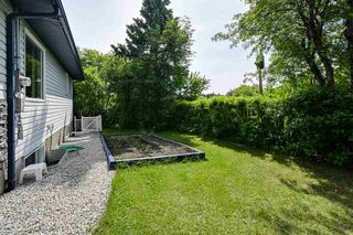 Photo 25: 8015 95A Street in Edmonton: Zone 17 House for sale : MLS®# E4202134
