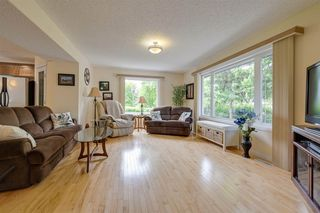 Photo 4: 8015 95A Street in Edmonton: Zone 17 House for sale : MLS®# E4202134