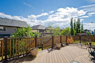 Photo 19: 194 Royal Birch Way NW in Calgary: Royal Oak Detached for sale : MLS®# A1024156
