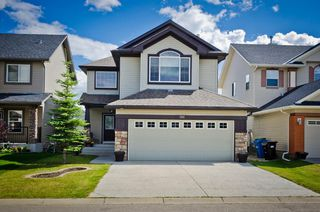Main Photo: 194 Royal Birch Way NW in Calgary: Royal Oak Detached for sale : MLS®# A1024156