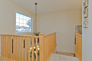 Photo 24: 194 Royal Birch Way NW in Calgary: Royal Oak Detached for sale : MLS®# A1024156