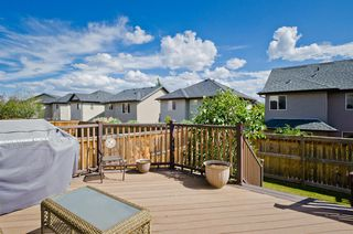 Photo 18: 194 Royal Birch Way NW in Calgary: Royal Oak Detached for sale : MLS®# A1024156