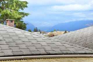 Photo 12: 534 E 29TH Avenue in Vancouver: Fraser VE House for sale (Vancouver East)  : MLS®# V946976