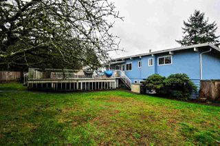 Photo 20: 5359 MORELAND DRIVE in Burnaby: Deer Lake Place House for sale (Burnaby South)  : MLS®# R2019460