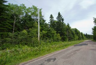 Photo 2: Lot Green Road: Westcock Vacant Land for sale (Sackville)  : MLS®# M106566