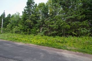 Photo 5: Lot Green Road: Westcock Vacant Land for sale (Sackville)  : MLS®# M106566