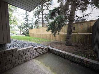 Photo 1:  in Edmonton: Garneau Condo for sale