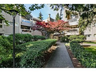 Photo 1: 109 932 ROBINSON STREET in Coquitlam: Coquitlam West Condo for sale : MLS®# R2313900