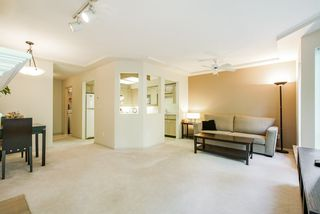 Photo 12: 107 8611 ACKROYD ROAD in Richmond: Brighouse Condo for sale : MLS®# R2316280