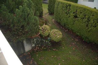 Photo 32: 43 3054 Trafalgar Street in Abbotsford: Townhouse for sale : MLS®# R2335808