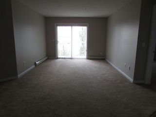 Photo 2: 240, Spruce Ridge Road in Spruce Grove: Condo for rent