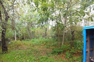 Photo 3: 1065 Eskasoni Road in Northside East Bay: 207-C. B. County Vacant Land for sale (Cape Breton)  : MLS®# 202021860