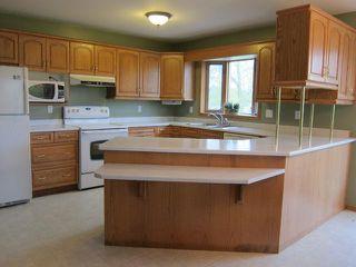 Photo 5: 66020 PR 206 Highway in SPRNGFLD: Anola / Dugald / Hazelridge / Oakbank / Vivian Residential for sale (Winnipeg area)  : MLS®# 1310654