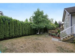 Photo 19: 16646 61 AV in Surrey: Cloverdale BC House for sale (Cloverdale)  : MLS®# F1446236