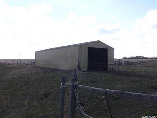 Photo 6: GERVIAS FARM in Benson: Farm for sale (Benson Rm No. 35)  : MLS®# SK793819