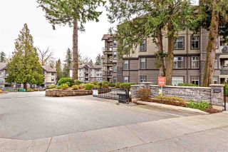 "Main Photo: 310 33318 E BOURQUIN Crescent in Abbotsford: Central Abbotsford Condo for sale in ""Nature's Gate"" : MLS®# R2449183"