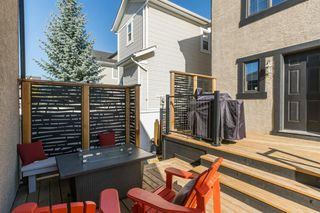 Photo 45: 4095 20 Street SW in Calgary: Garrison Woods Detached for sale : MLS®# A1040254