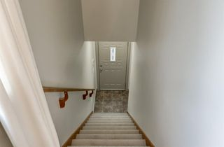 Photo 31: 4095 20 Street SW in Calgary: Garrison Woods Detached for sale : MLS®# A1040254