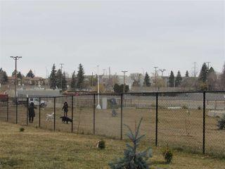 Photo 35: 205 2612 109 Street in Edmonton: Zone 16 Condo for sale : MLS®# E4218550