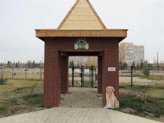 Photo 33: 205 2612 109 Street in Edmonton: Zone 16 Condo for sale : MLS®# E4218550