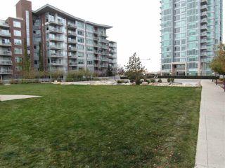 Photo 31: 205 2612 109 Street in Edmonton: Zone 16 Condo for sale : MLS®# E4218550