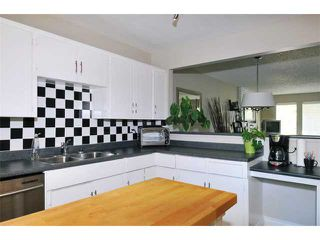 Photo 5: 1245 BLUFF Drive in Coquitlam: River Springs House for sale : MLS®# V975554