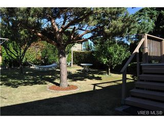 Photo 12: 3921 S Raymond St in VICTORIA: SW Tillicum Single Family Detached for sale (Saanich West)  : MLS®# 646748