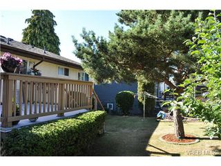 Photo 13: 3921 S Raymond St in VICTORIA: SW Tillicum Single Family Detached for sale (Saanich West)  : MLS®# 646748