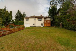 Photo 5: 3887 Seaton St in VICTORIA: SW Tillicum House for sale (Saanich West)  : MLS®# 820853