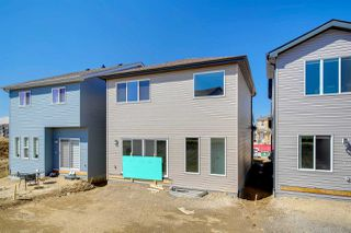 Photo 37:  in Edmonton: Zone 55 House for sale : MLS®# E4195248
