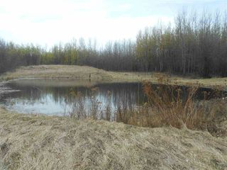 Photo 18: 56030 RR 81: Rural Lac Ste. Anne County Manufactured Home for sale : MLS®# E4196657