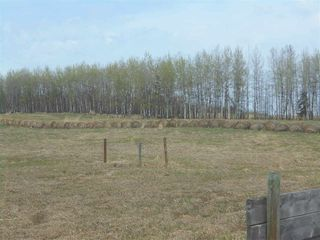 Photo 14: 56030 RR 81: Rural Lac Ste. Anne County Manufactured Home for sale : MLS®# E4196657