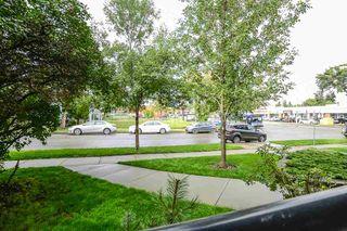 Photo 21: 101 9905 81 Avenue in Edmonton: Zone 17 Condo for sale : MLS®# E4174358
