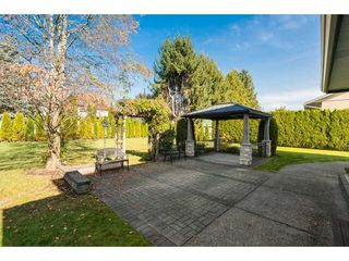 Photo 18: 21875 44 Avenue in Langley: Murrayville House for sale : MLS®# R2413242
