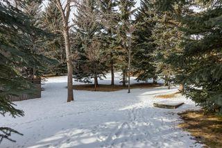 Photo 35: #706 3130 66 AV SW in Calgary: Lakeview House for sale : MLS®# C4286507