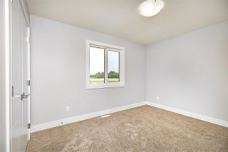 Photo 22:  in Edmonton: Zone 55 House for sale : MLS®# E4199729