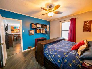 Photo 19: 12086 58 Street in Edmonton: Zone 06 House for sale : MLS®# E4201475