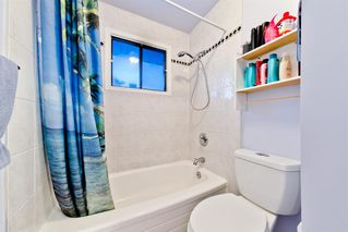 Photo 8: 4728 Rundlehorn Drive NE in Calgary: Rundle Detached for sale : MLS®# A1051594