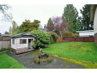 Photo 10: 21009 RIVER Road in Maple Ridge: Southwest Maple Ridge House for sale : MLS®# V969102