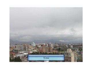 Photo 7: # 1503 120 MILROSS AV in Vancouver: Mount Pleasant VE Condo for sale (Vancouver East)  : MLS®# V1101656