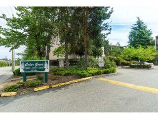 """Photo 2: 101 15288 100 Avenue in Surrey: Guildford Condo for sale in """"Cedar Grove"""" (North Surrey)  : MLS®# R2389430"""
