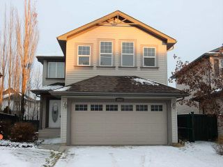 Main Photo: 2117 Garnett Close in Edmonton: Zone 58 House for sale : MLS®# E4179289