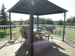 Photo 33: 49 52318 RGE RD 213: Rural Strathcona County House for sale : MLS®# E4187551