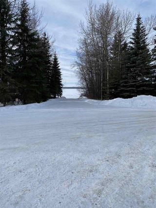 Photo 11: B15 Johnsonia Beach: Rural Leduc County House for sale : MLS®# E4189139