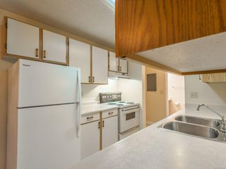 Photo 9: 101 3270 Ross Rd in : Na Uplands Condo for sale (Nanaimo)  : MLS®# 860268
