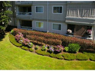 Photo 6: 208 20125 55A Avenue in Langley: Langley City Condo for sale : MLS®# F1314922