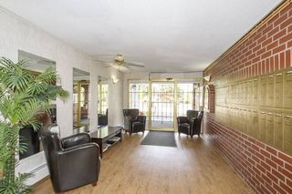 Photo 2: 307-12096 222nd in Maple Ridge: West Central Condo for sale : MLS®# R2065694