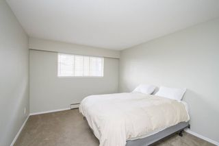 Photo 12: 307-12096 222nd in Maple Ridge: West Central Condo for sale : MLS®# R2065694