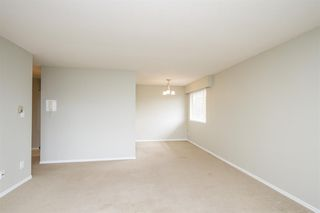 Photo 7: 307-12096 222nd in Maple Ridge: West Central Condo for sale : MLS®# R2065694